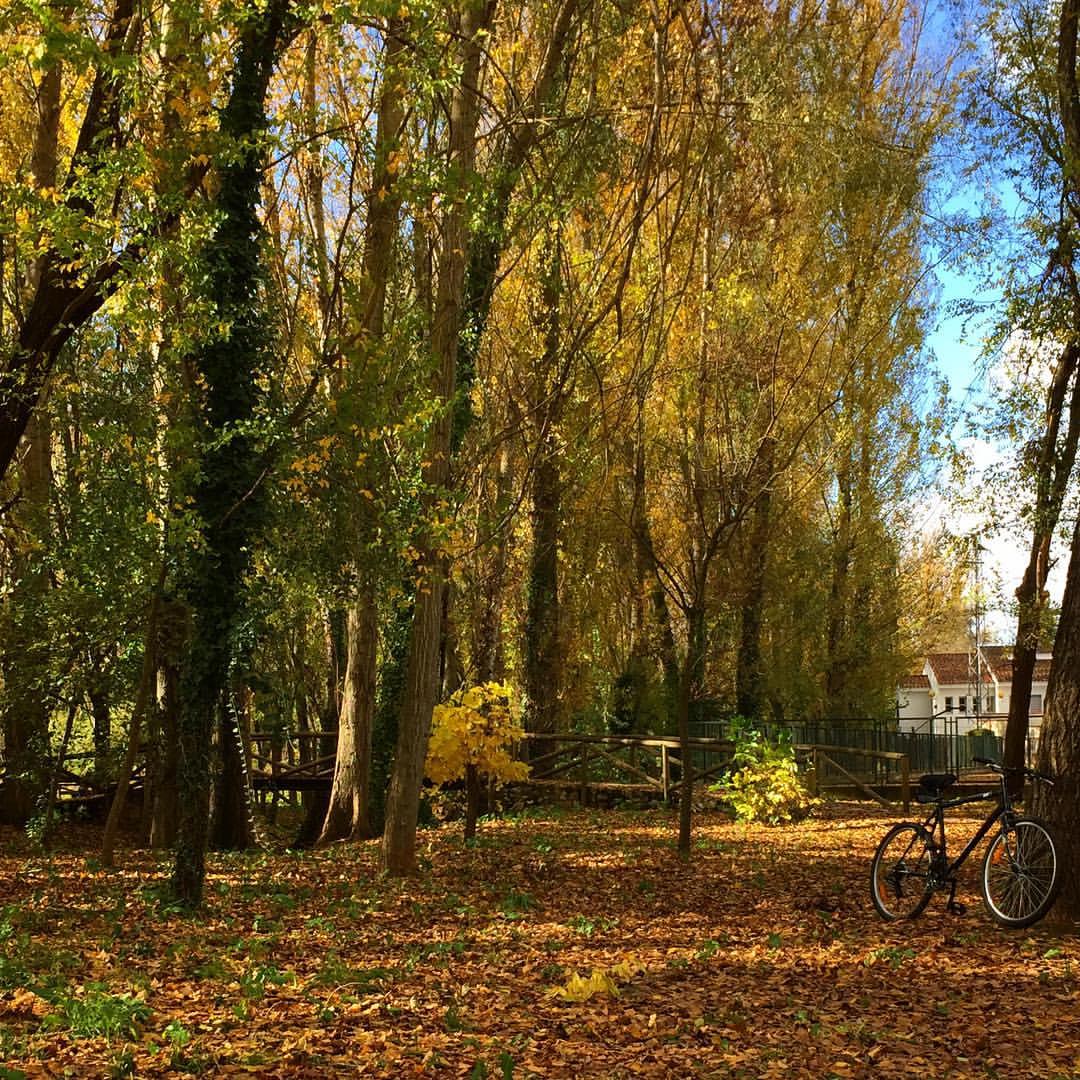 21-dias-de-otoño-5