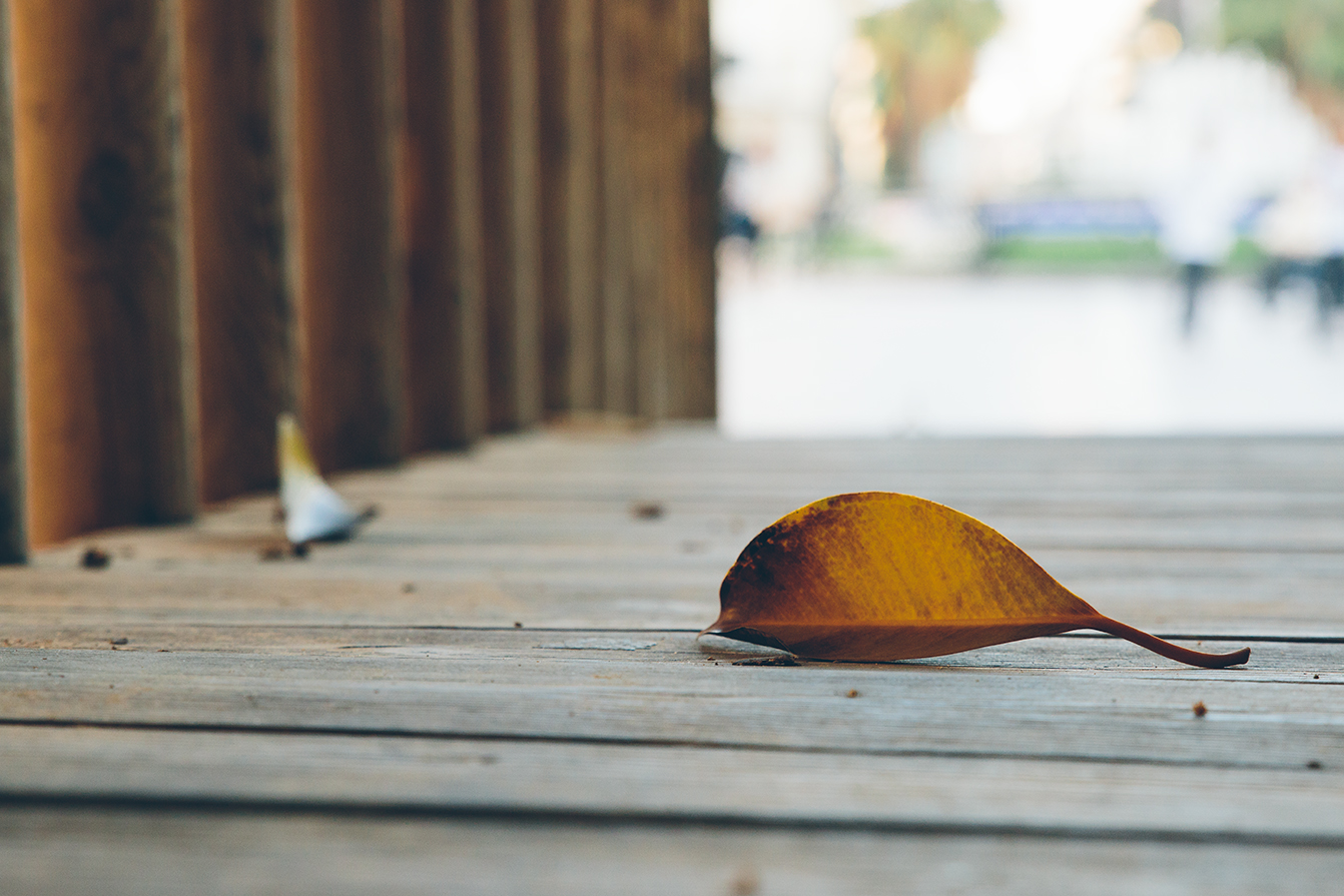 21-dias-de-otoño-7
