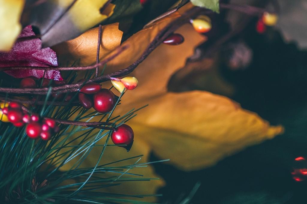 alt-21-dias-de-navidad-9